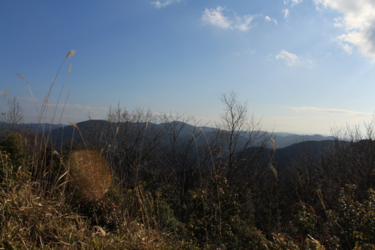 里山 景色 風景